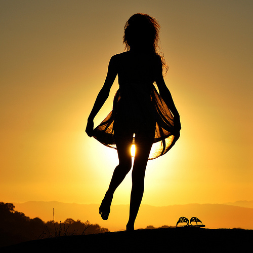 sunlit, backlit, silhouette, nature, photography