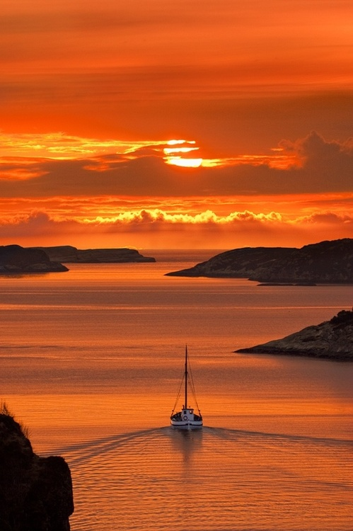 sunset, sailing, boat, nature, sea