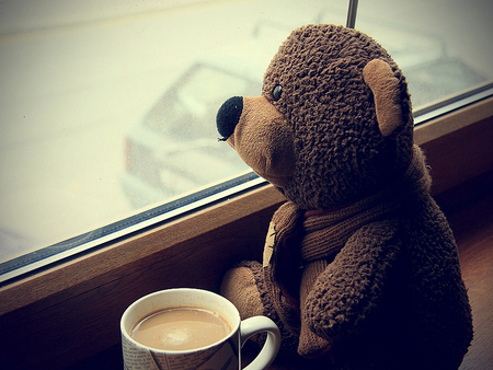 teddy bear, coffee, window, beautiful