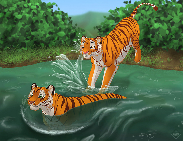 tiger, water, stripes, friends
