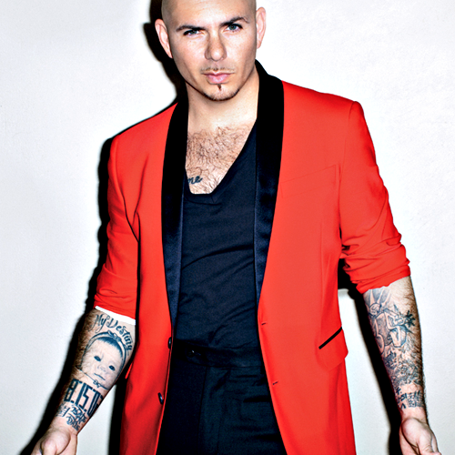 weekend, cool, pitbull