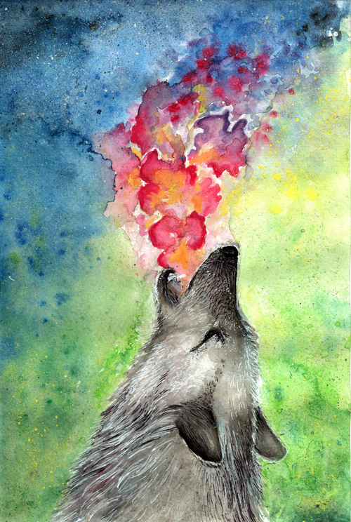 wolf, color, colorful, art, painting