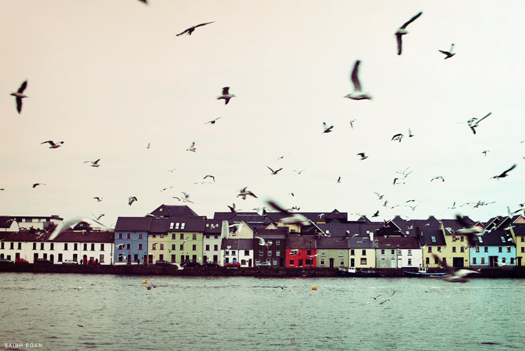365, project365, claddagh, galway