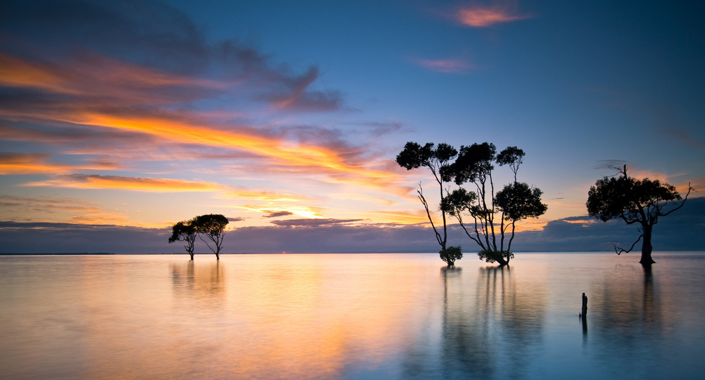 archive, australia, beachmere, brisbane, chamellieon, cloud, d700, different, landscape, light, long exposure, mel sinclair, morning, nikon, qld, queensland, reflection, silhouette, sky, sunrise, tree, water