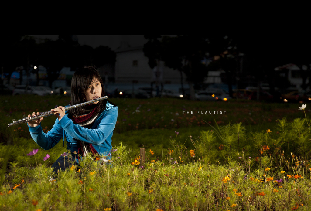 brandonhuang, grass, field, flower