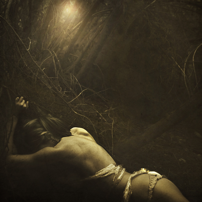 brookeshaden, trees, bones, sticks