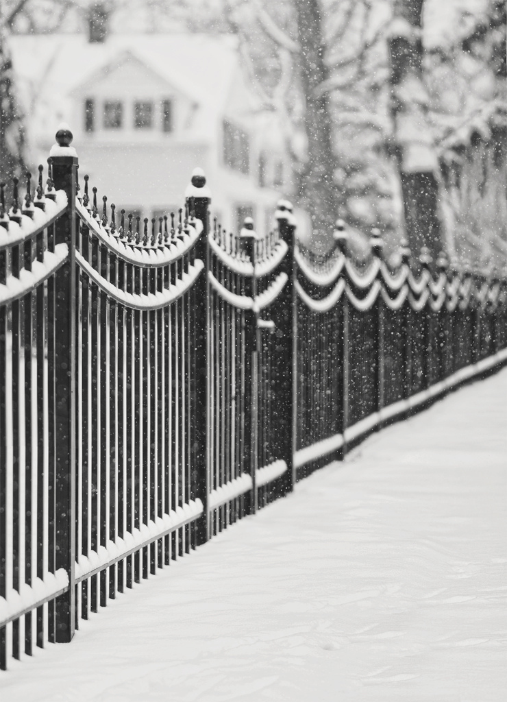 Fence Friday, HFF, Lake Bluff, Illinois