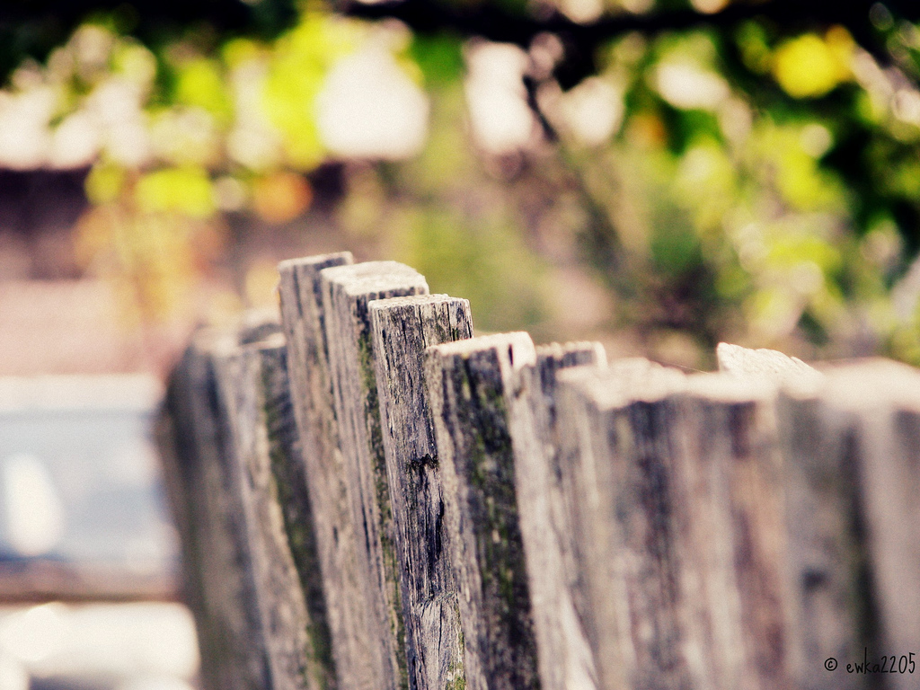 fence, wooden fence, old fence, DoF