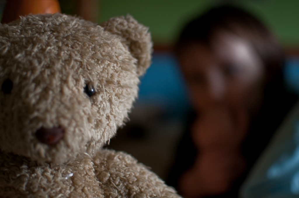 Harry, Teddy bear, Bokeh people, Nikon