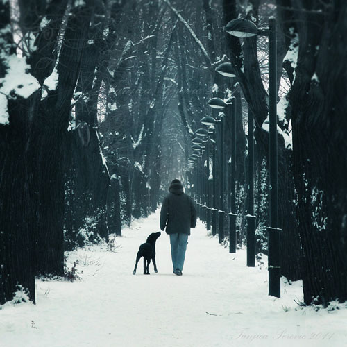 ??? ?? ??????, ??????, ?????? ???????, ????????, ???????????, alley, animal, atmospheric, best friend, blue, branches, canoneos400d, cherish, companion, companionship, dog, dreamscape, explored, faithful, fathfullness, fotograf, fotografija, friends
