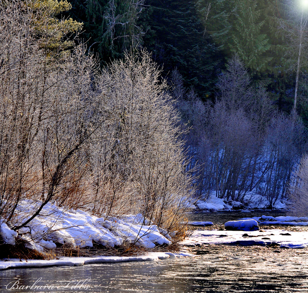Nikon, d90, Grouse Creek, Winter