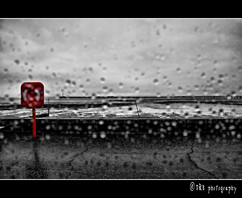 Nikon, D90, Rainy, Day