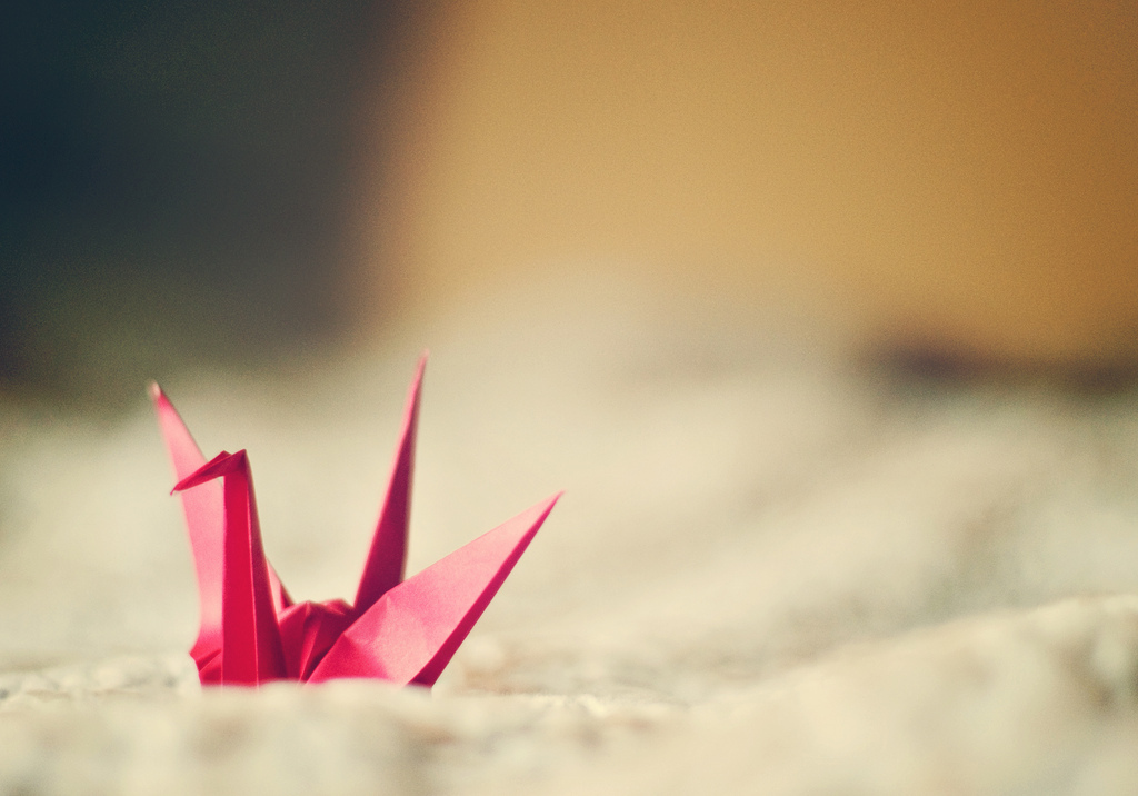 paper, crane, pink, natural light