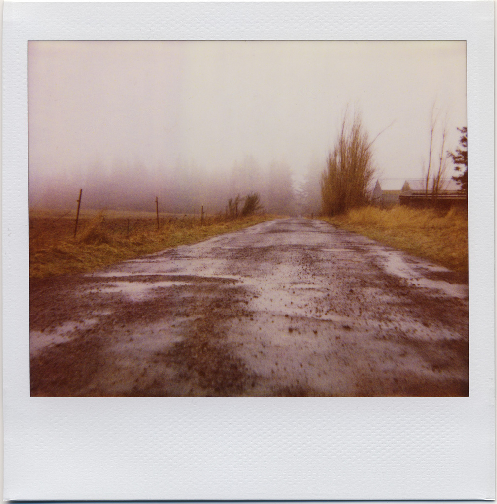 polaroid, spectra, country roads in fog