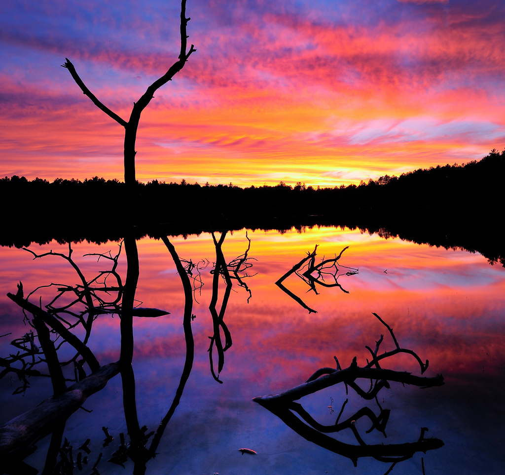sunset, USA, Ottawa National Forest, silhouette