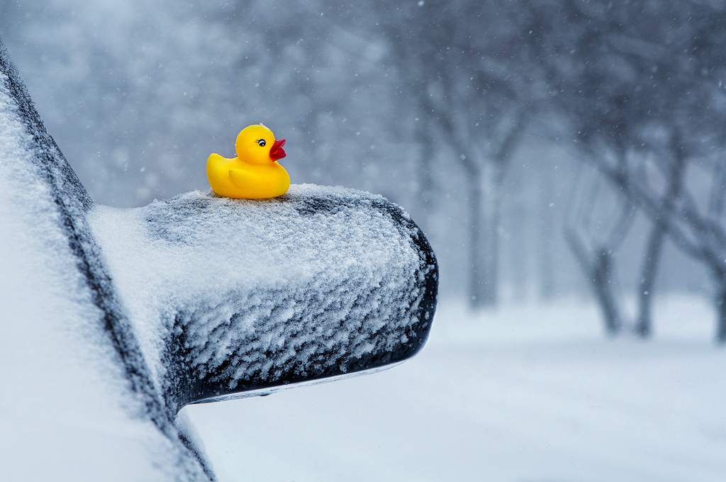 Toy-in-the-Frame Thursday, HTITFT, Snow Day, Rubber Ducky