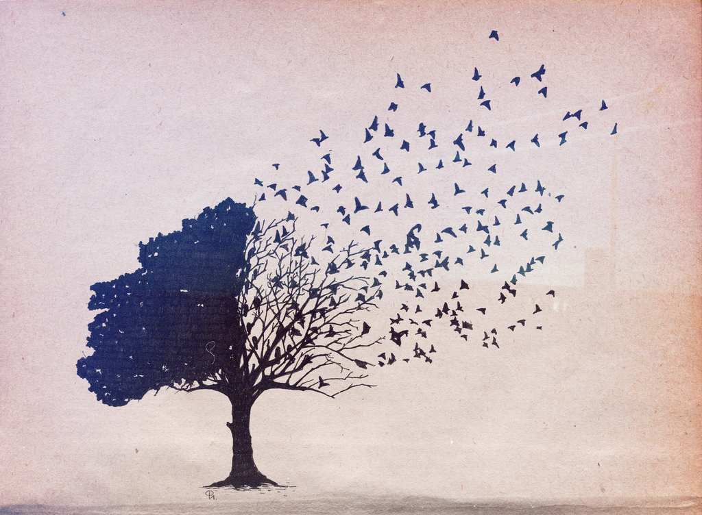 tree, birds, drawing, corvax