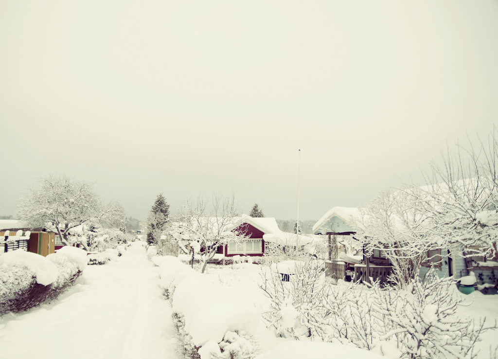Winter, Snow, Alotment, Houses