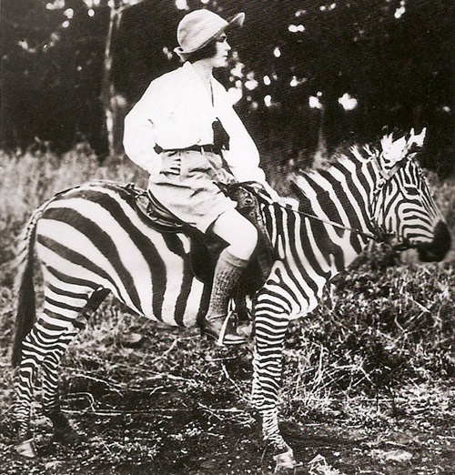 1930, africa, animal, clothes, creative, hot, kenya, nature, osa johnson, retro, ride, rider, strips, summer, vintage, warm, zebra