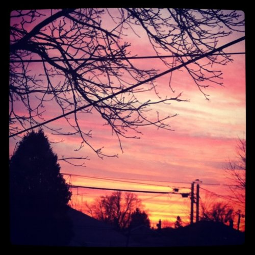 2012, beautiful, landscape, orange, outside, pink, pretty, red, sky, snow, sunset, tree, winter