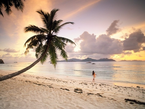 africa, beach, beautiful, dress, environment, fairytale, girl, indian ocean, life, love, madagascar, magical, nature, ocean, palm, place, sea, seychelles island, seychelles islands, sky, spring, summer, sunset, tropical