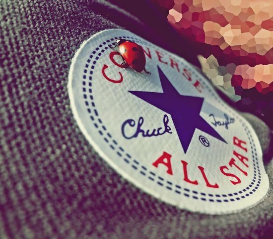 all star, brand, chuck, chuck taylor, converse, gray, grey, ladybird, shoe, spring, star, taylor, text