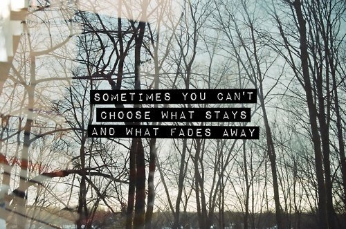 away, choose, love, quote, quotes, stay, text