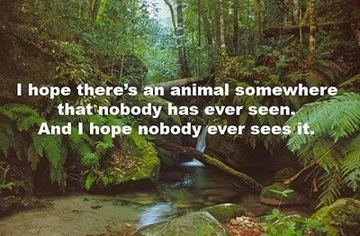 animal, animals, nature, people