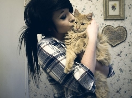 animal, black hair, cat, crosscourtneyat, girl, hair, kitty, scene, scene girl, scene hair, scene style, style