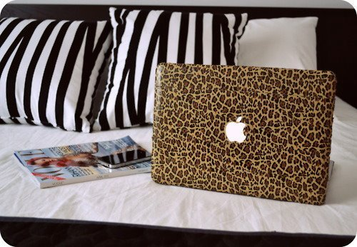 animal print, apple, beautiful, boy