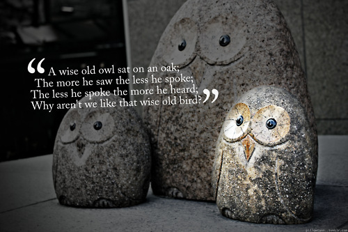art, cute, dark, grey, inspirational, listen, motivational, original, owl, photography, poem, quote, rhyme, riddle, saying, sculpture, statue, stone, text, typography, vignette, wisdom, words
