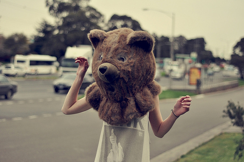 awesome, bear, girl, head