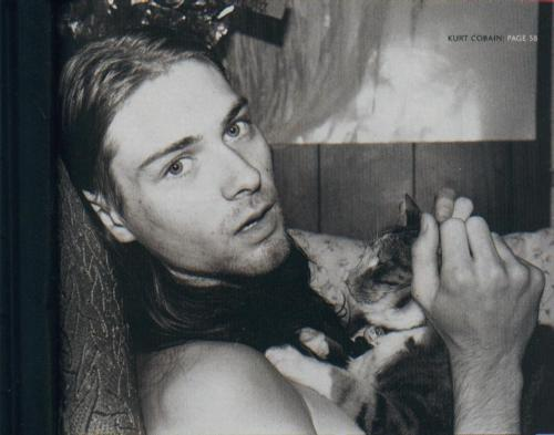 b&w, black and white, cat, cobain, kurt, kurt cobain, nirvana, photography, rocker, sexy, vintage