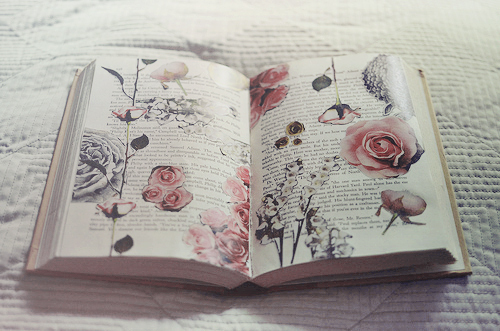 beautiful, book, flowers, rose