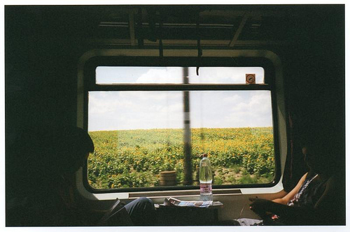 beautiful, field, flickr, hipster