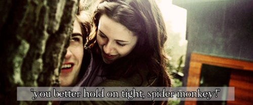 bella and edward, bella swan, beward, couple