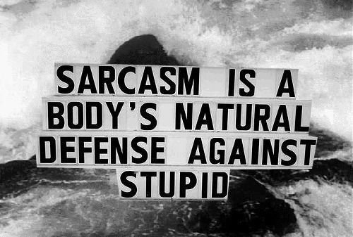 black and white, defense, haha, nice, sarcasm, stupid, text, truth