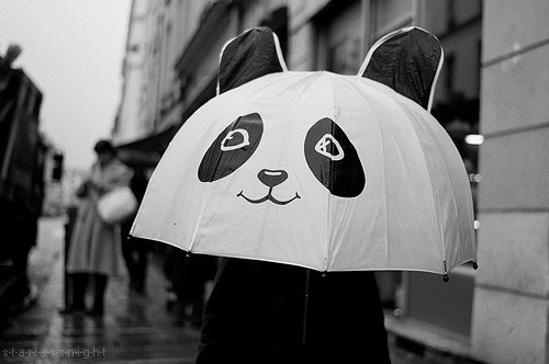 black and white, panda, photography, umbrella