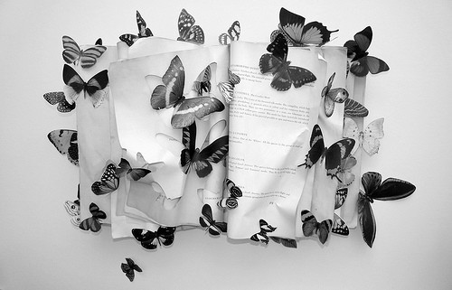 black, black and white, book, buterfly