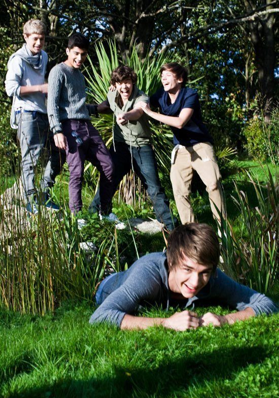 boy, boys, family, forrest, friends, grass, green, harry styles, irish, irlenad, liam payne, louis tomlinson, love, nature, niall horan, ny, one direction, patrick, sexy, smile, uk, us, zayn malik