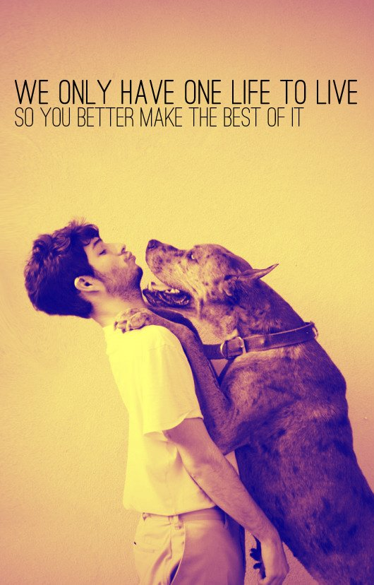 bruno mars, dog, it gets better