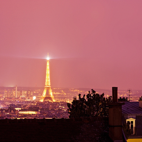 eiffel, eiffel tower, flower, france, hotel, lights, paris, pink, room, spring