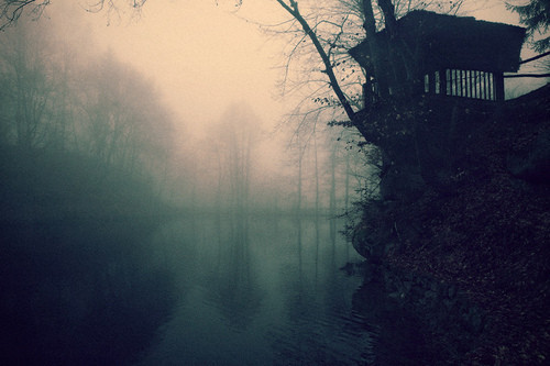 elvishwisdom, fog, mist, nature, river, tree, trees, water
