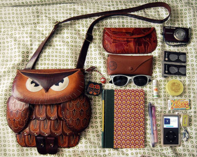 glasses, ipod, notebook, owl, purse