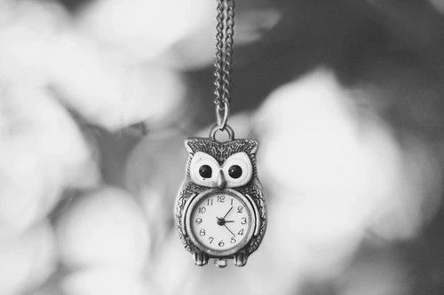 jewerly, owl, vintage, watches