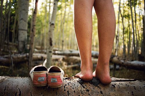 leg, nature, photography, shoe