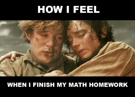 funny, homework, lol, lotr, math, meme, school, true