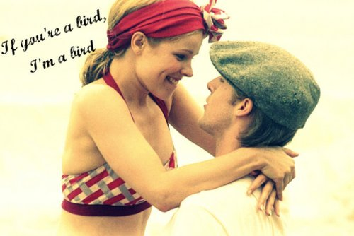 love, noah and allie, pretty, rachel mcadams