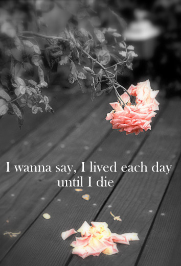 beautiful, beyonce, die, each day, flower, i was here, lyrics, quote, song, text