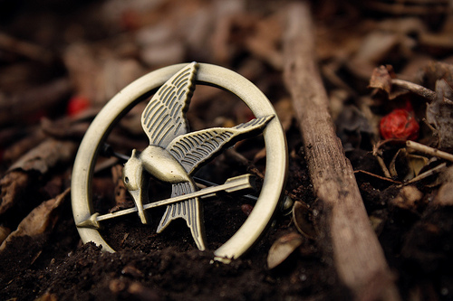 mockingjay, the hunger games